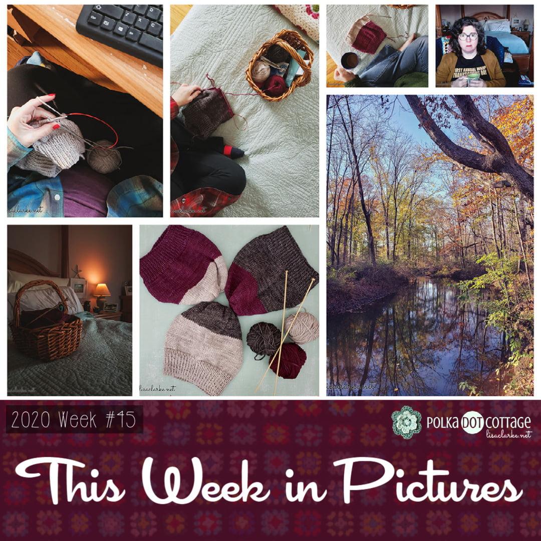 This Week in Pictures, Week 45, 2020
