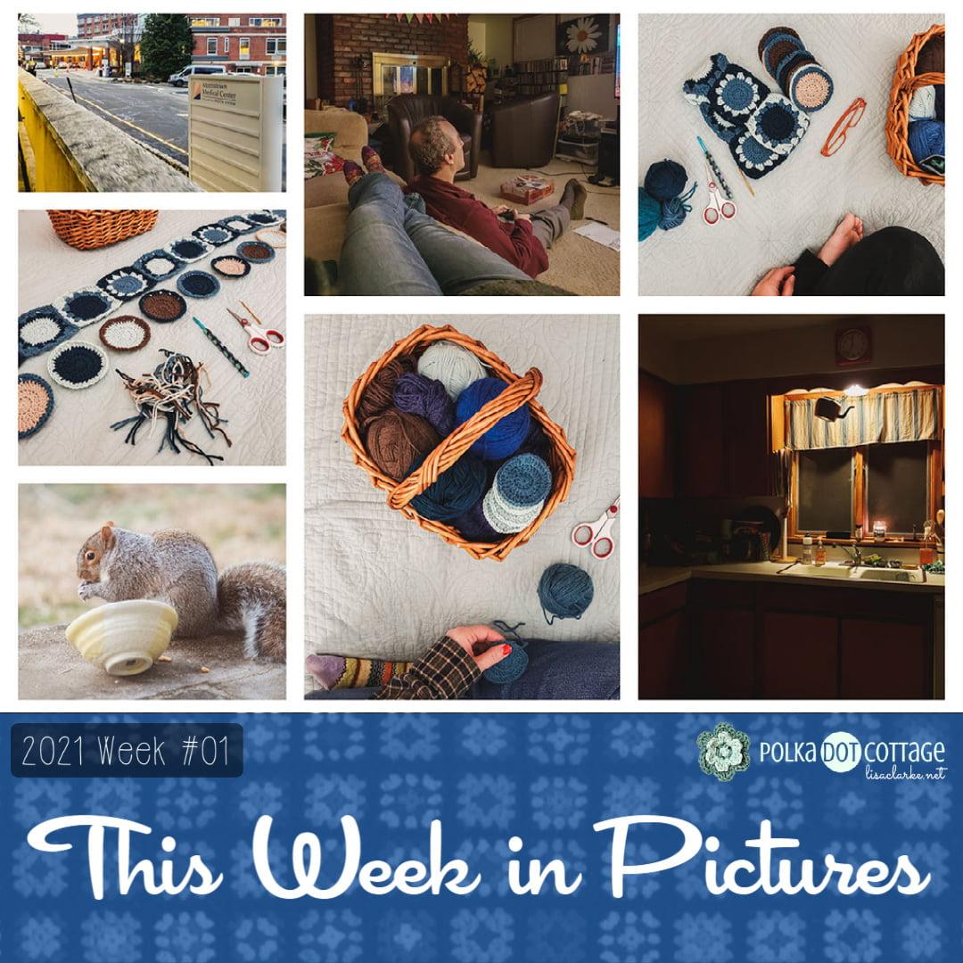 This Week in Pictures, Week 1, 2021