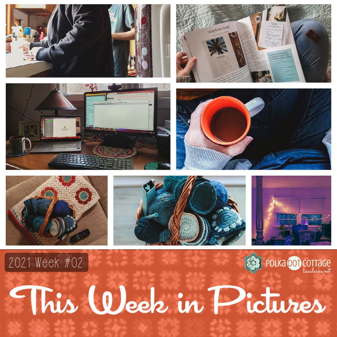 This Week in Pictures, Week 2, 2021