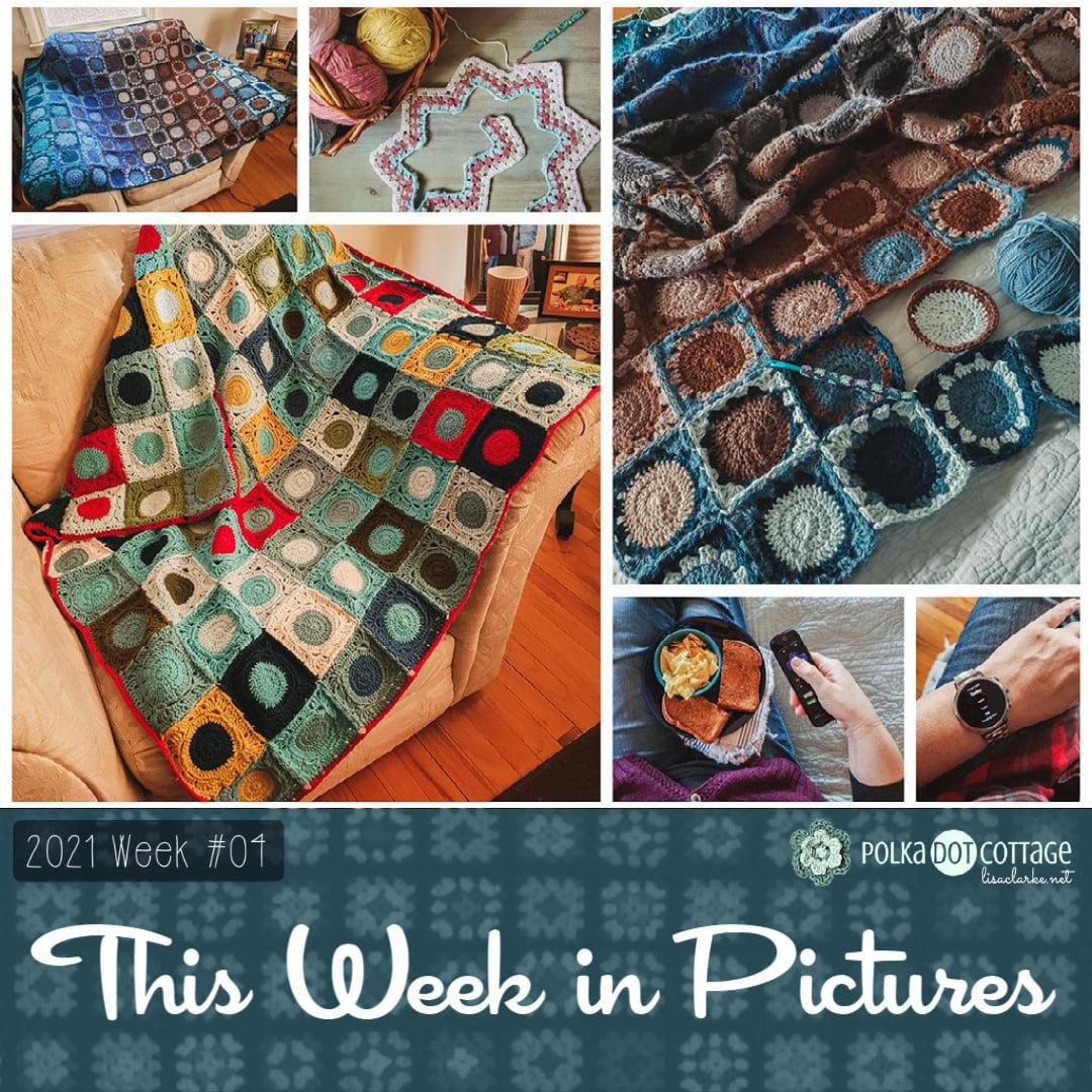 This Week in Pictures, Week 4, 2021