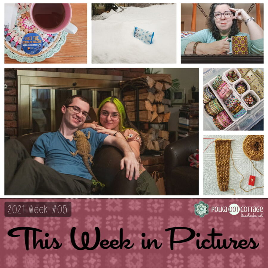This Week in Pictures, Week 8, 2021