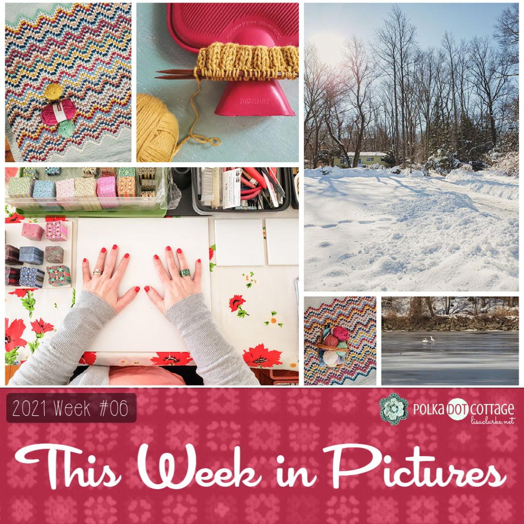 This Week in Pictures, Week 6, 2021