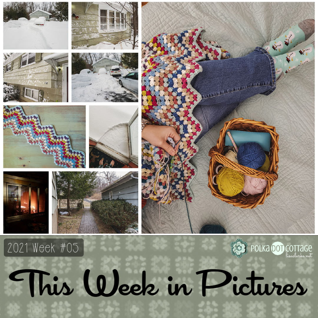 This Week in Pictures, Week 5, 2021