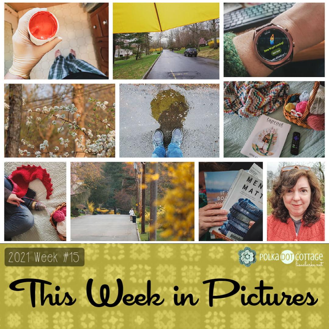 This Week in Pictures, Week 15, 2021