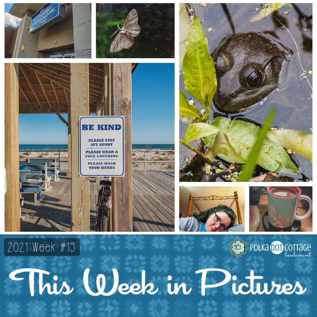 The Week in Pictures, week 19, 2021