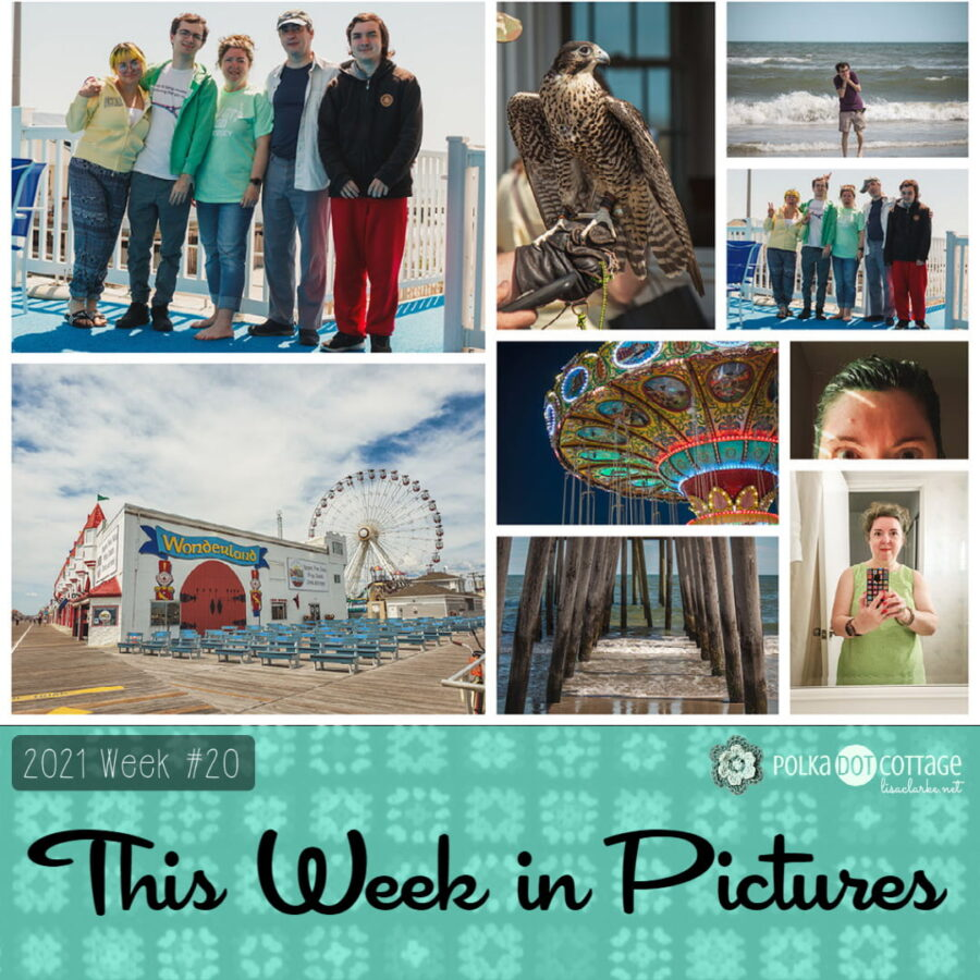 This Week in Pictures, Week 20, 2021