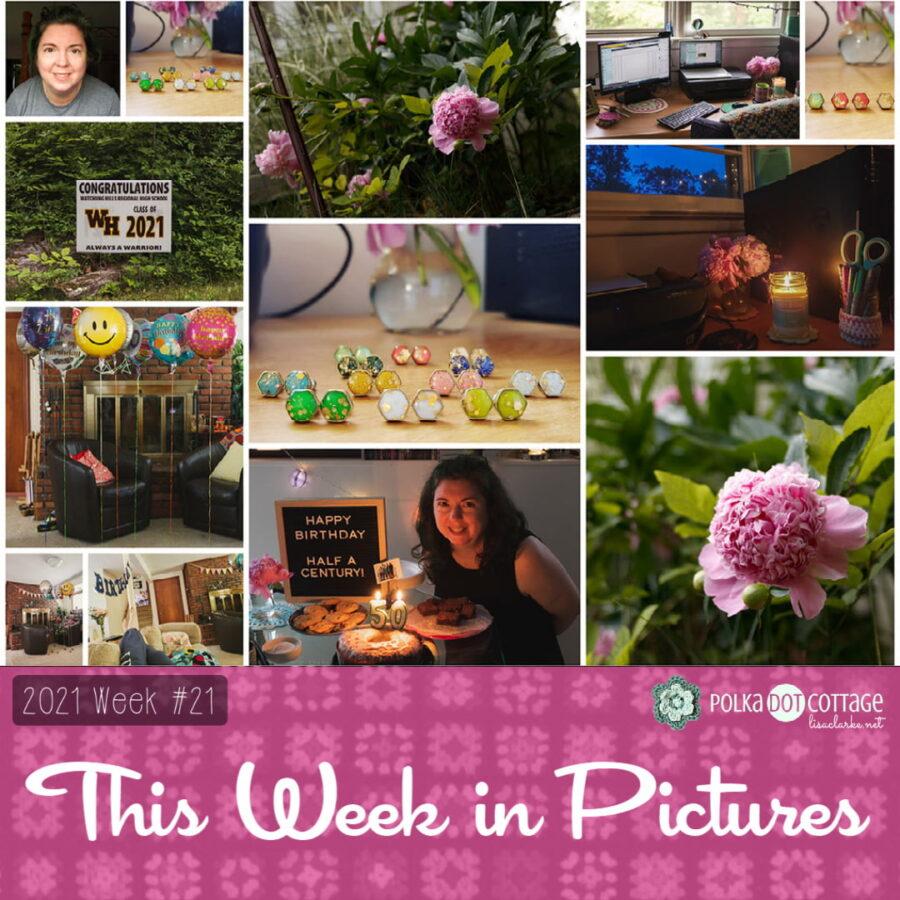The Week in Pictures, Week 21, 2021