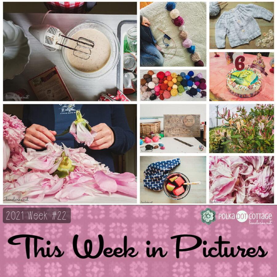 The Week in Pictures, Week 22, 2021