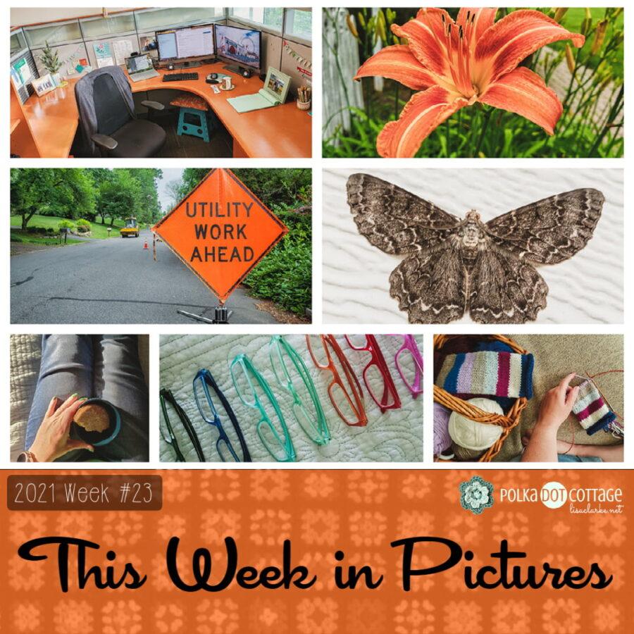 This Week in Pictures, Week 23, 2021