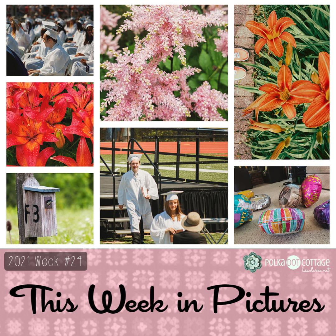 This Week in Pictures, Week 24, 2021