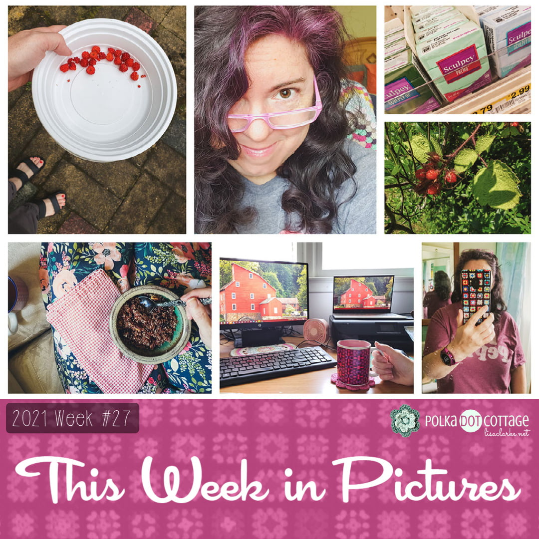 This Week in Pictures, Week 27, 2021