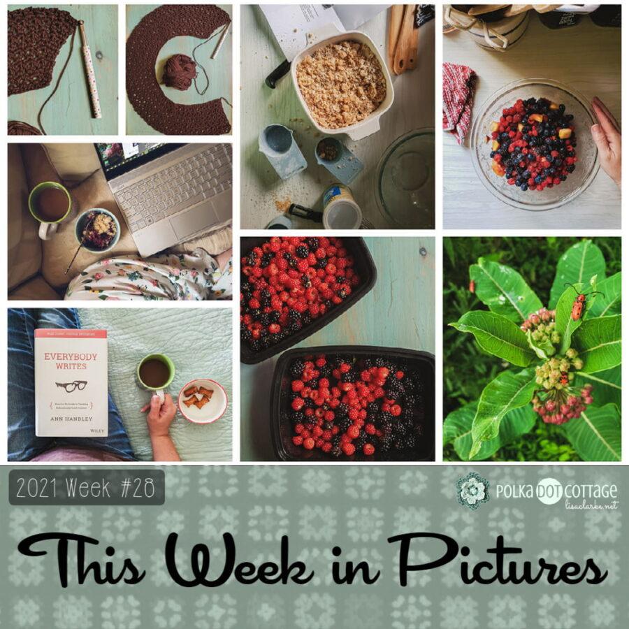 This Week in Pictures, Week 28. 2021