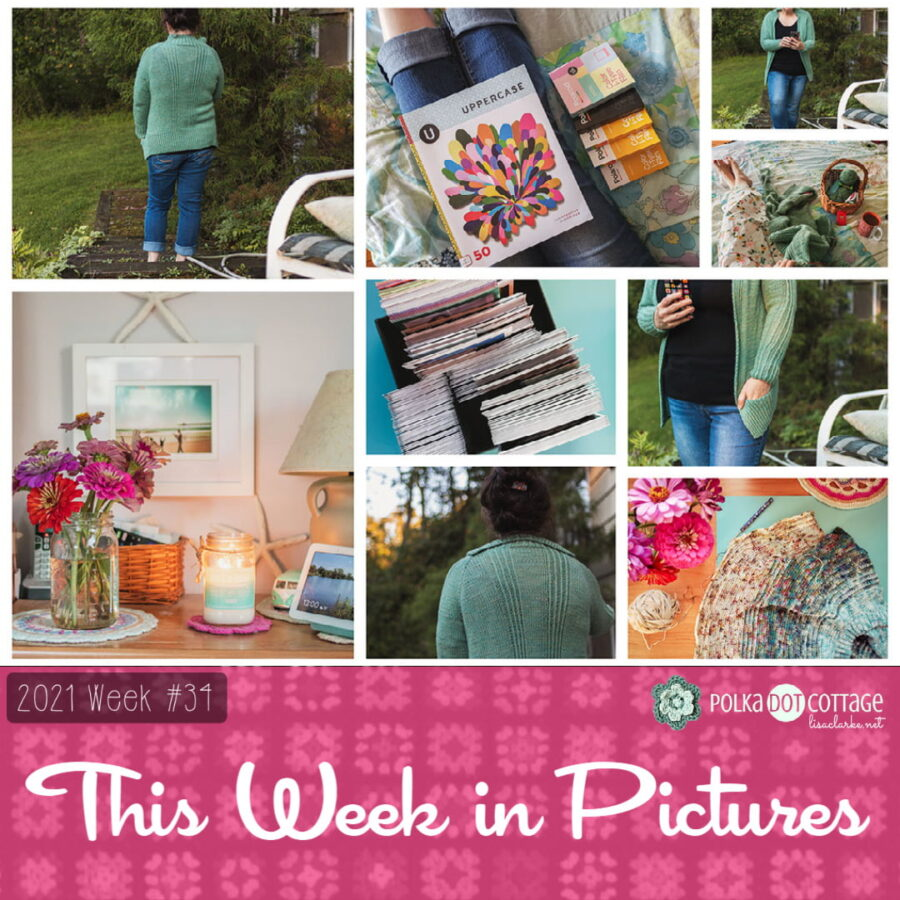 This Week in Pictures, Week 33, 2021