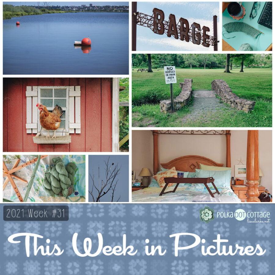 This Week in Pictures, Week 31, 2021