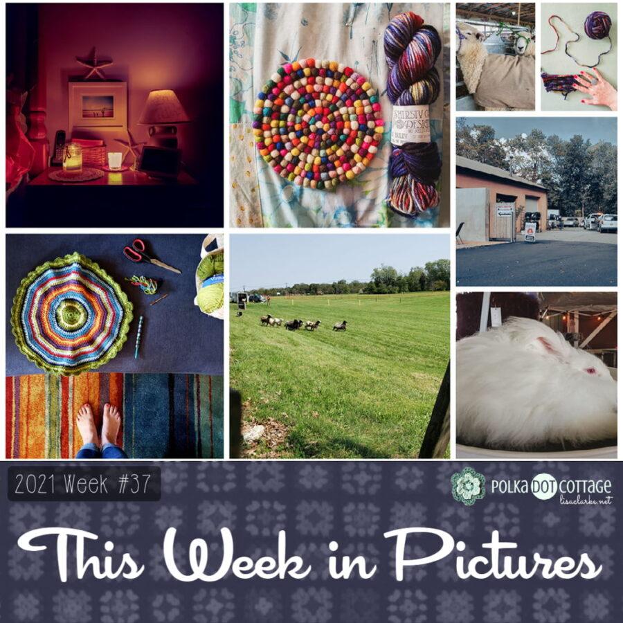 This Week in Pictures, Week 37, 2021