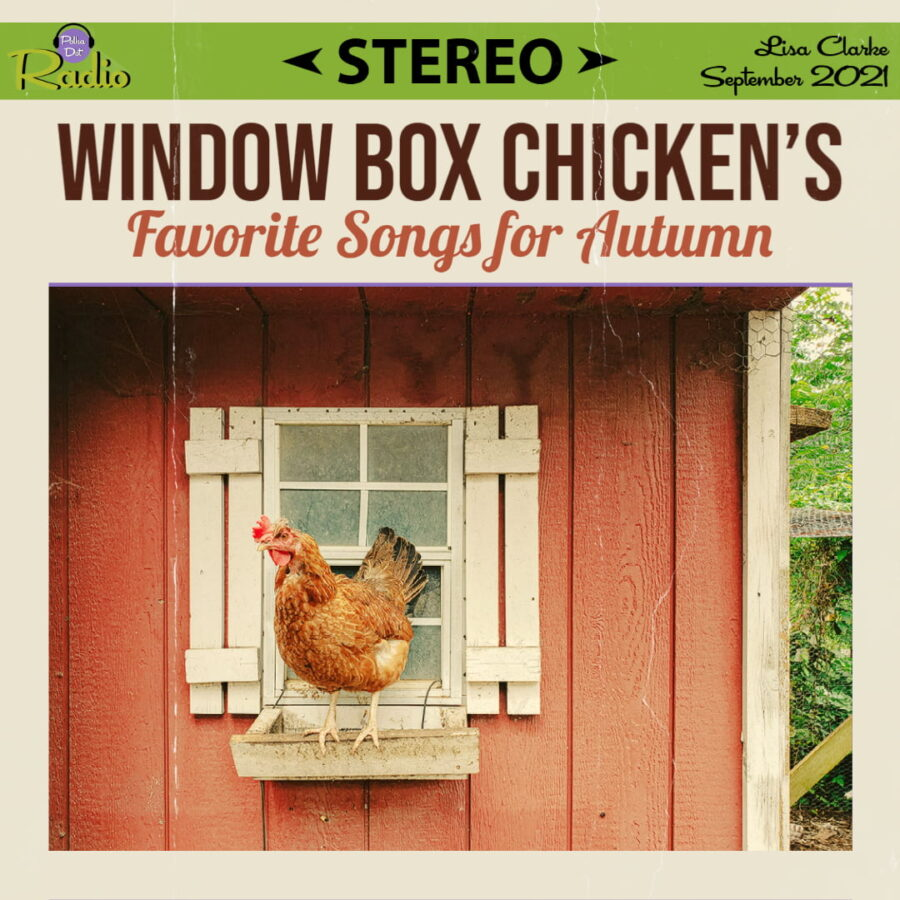 Window Box Chicken's Favorite Songs for Autumn